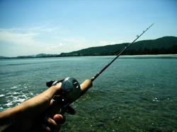 kotafishing